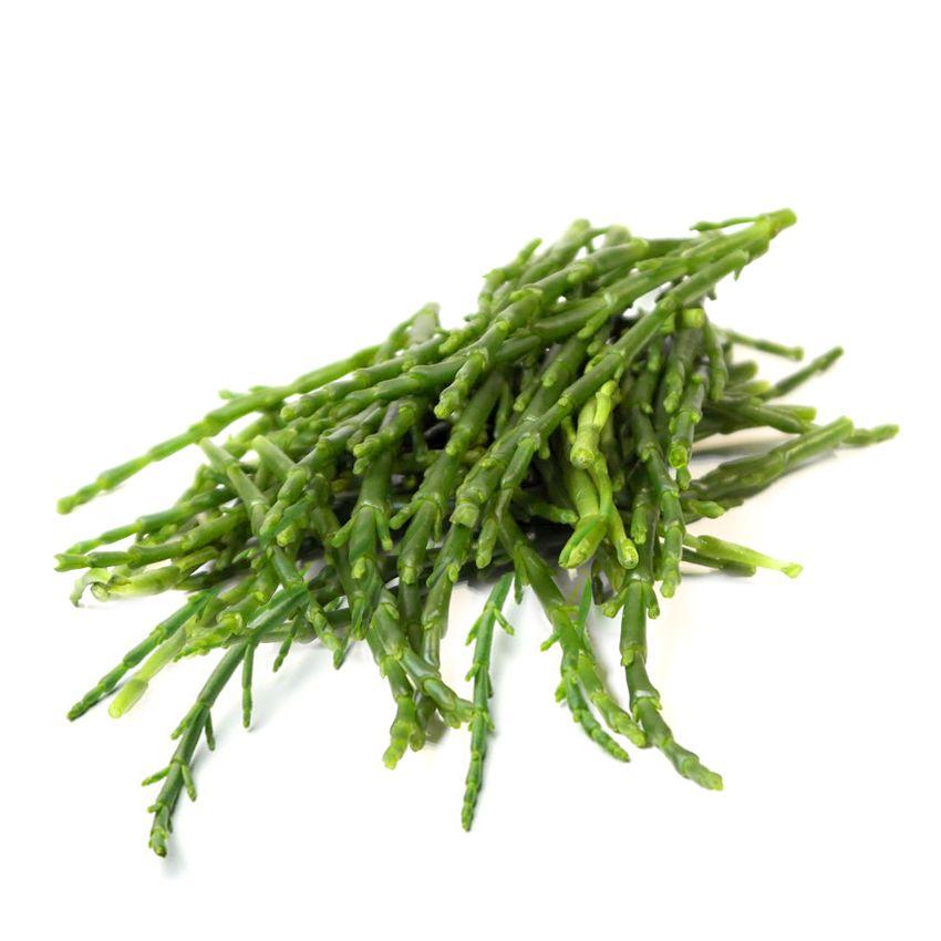 Soliród - Zioła cięte, warzywa, grzyby, owoce egzotyczne i przyprawy Freshmint Łódź