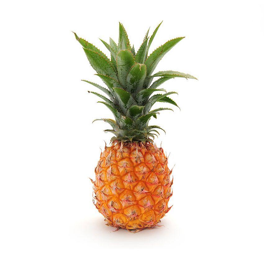 Ananas mini - Zioła cięte i przyprawy Freshmint Łódź