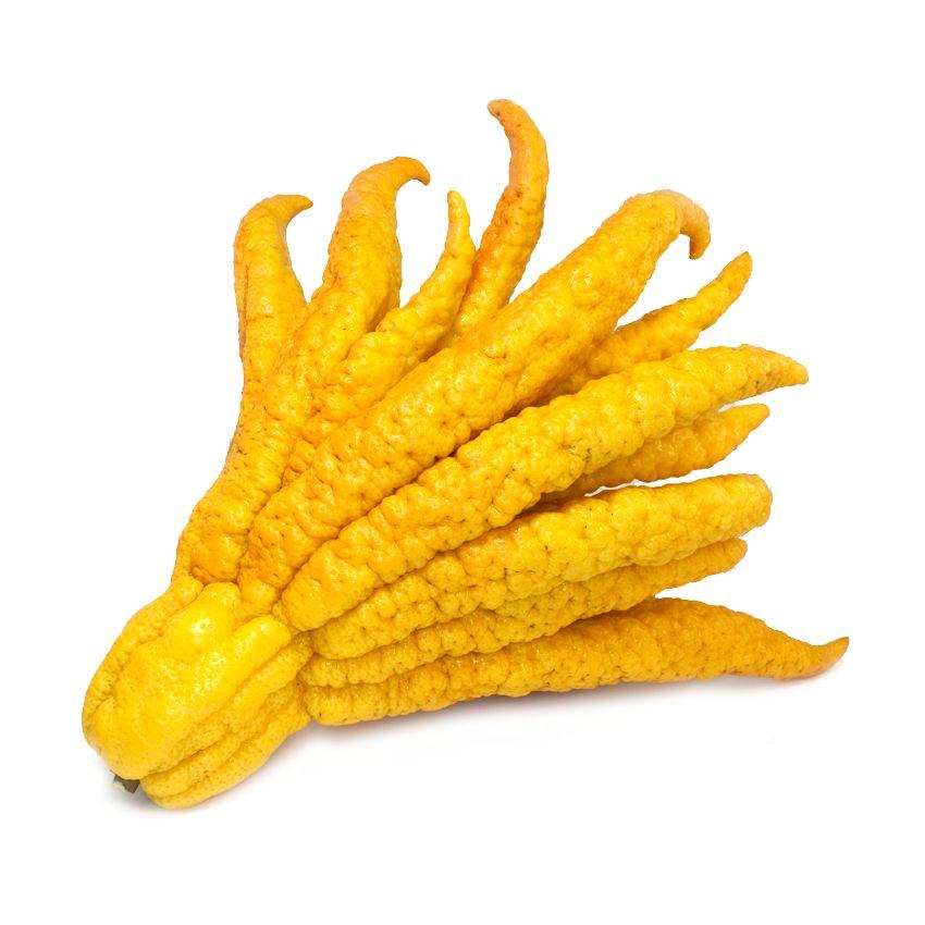 Buddahfingers - Zioła cięte, warzywa, grzyby, owoce egzotyczne i przyprawy Freshmint Łódź