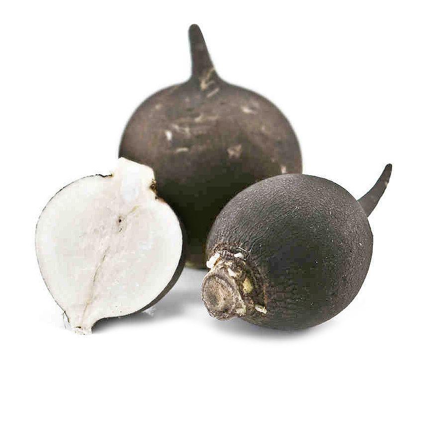Rzodkiew czarna - Zioła cięte, warzywa, grzyby, owoce egzotyczne i przyprawy Freshmint Łódź