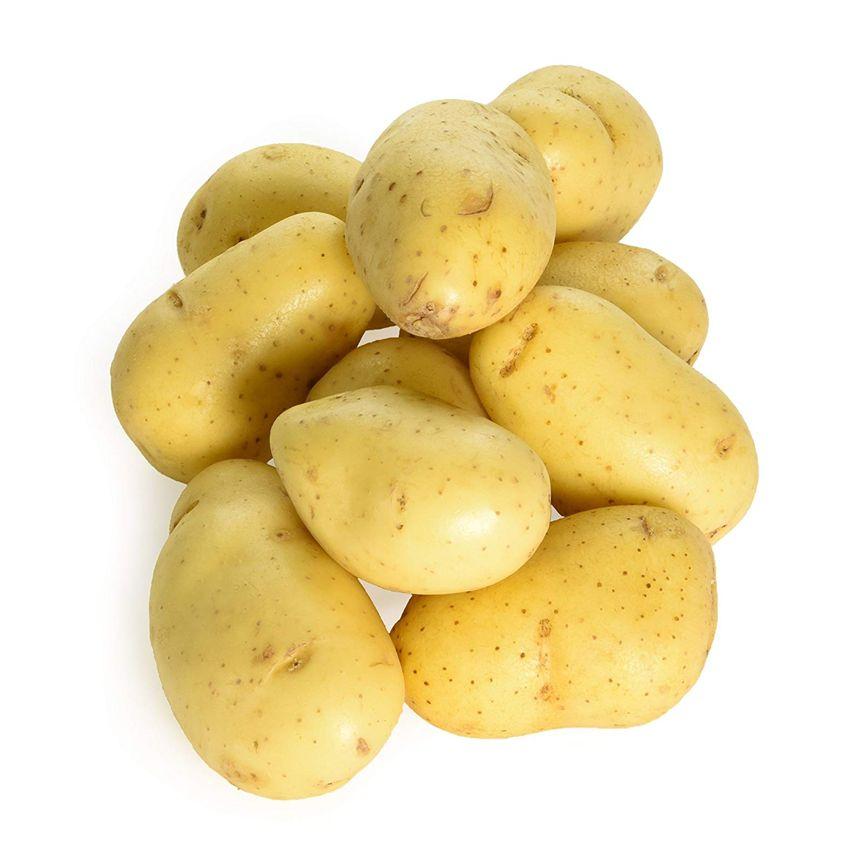 Ziemniak charlotte - Zioła cięte, warzywa, grzyby, owoce egzotyczne i przyprawy Freshmint Łódź