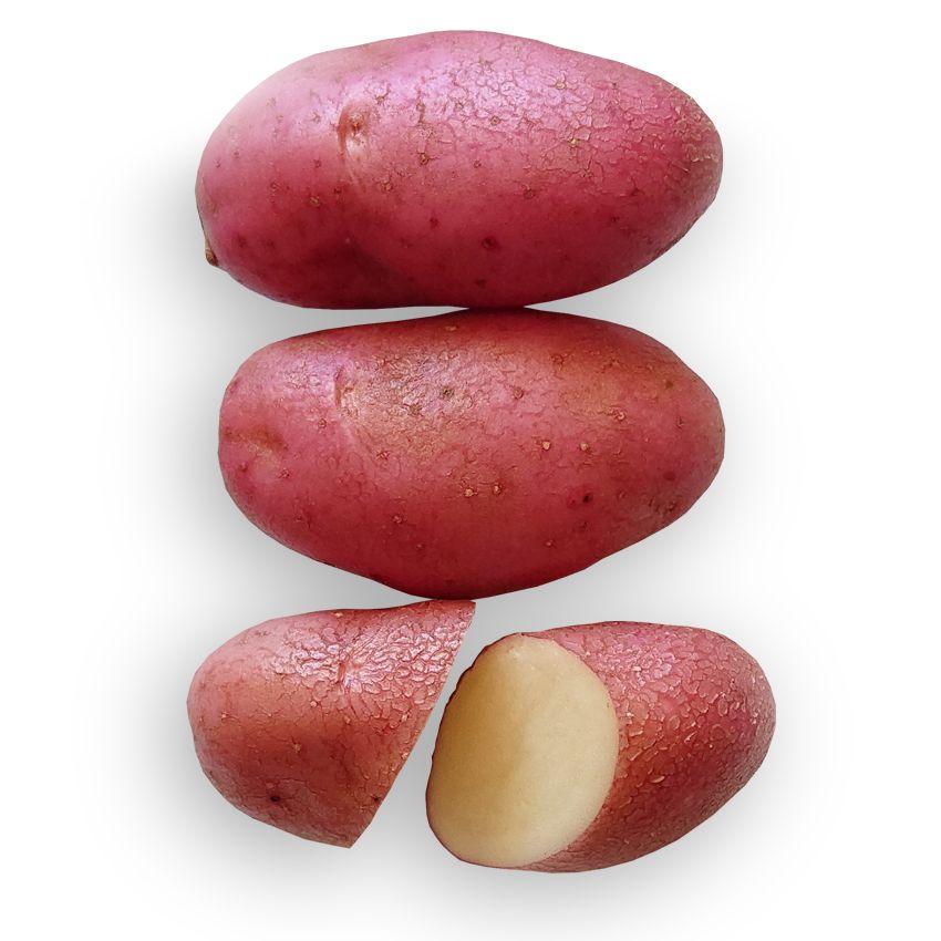 Ziemniak cherrie - Zioła cięte, warzywa, grzyby, owoce egzotyczne i przyprawy Freshmint Łódź