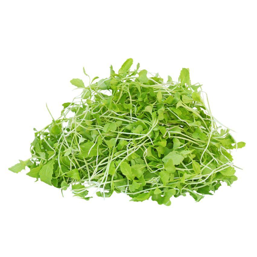 Musztardowiec zielony - Zioła cięte, warzywa, grzyby, owoce egzotyczne i przyprawy Freshmint Łódź