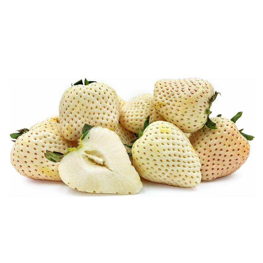 Truskawka ananasowa - Zioła cięte, warzywa, grzyby, owoce egzotyczne i przyprawy Freshmint Łódź