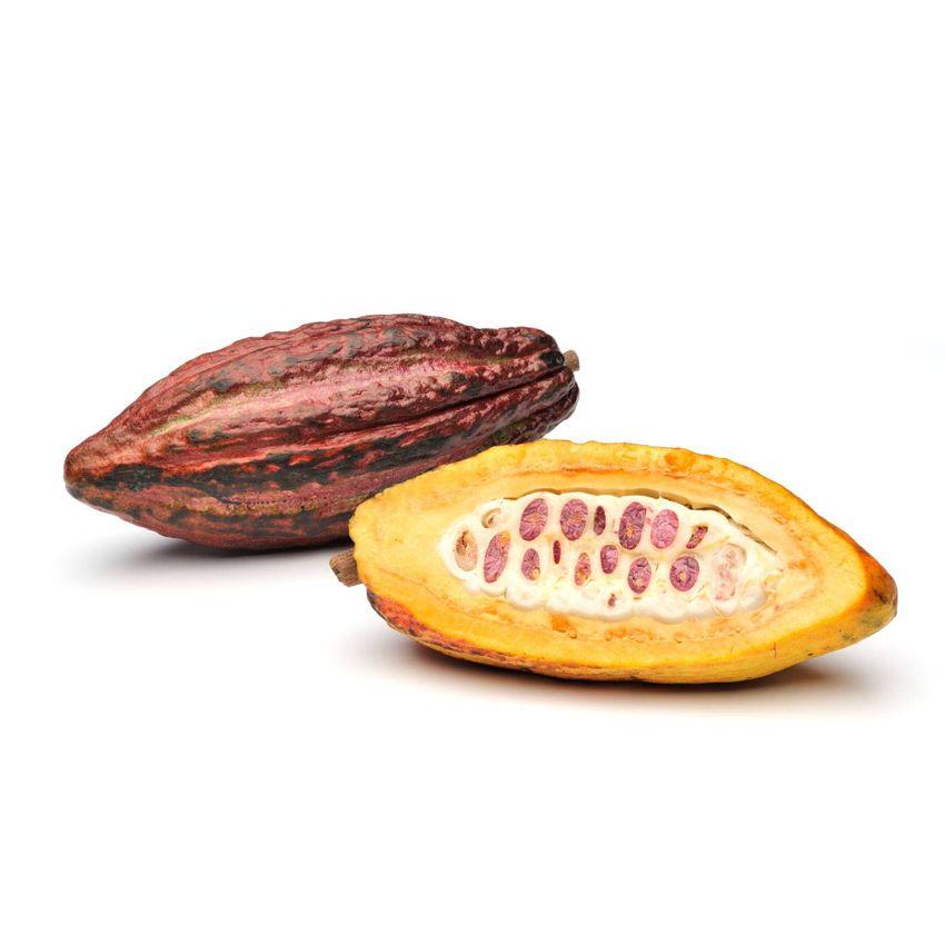 Kakao owoc - Zioła cięte, warzywa, grzyby, owoce egzotyczne i przyprawy Freshmint Łódź