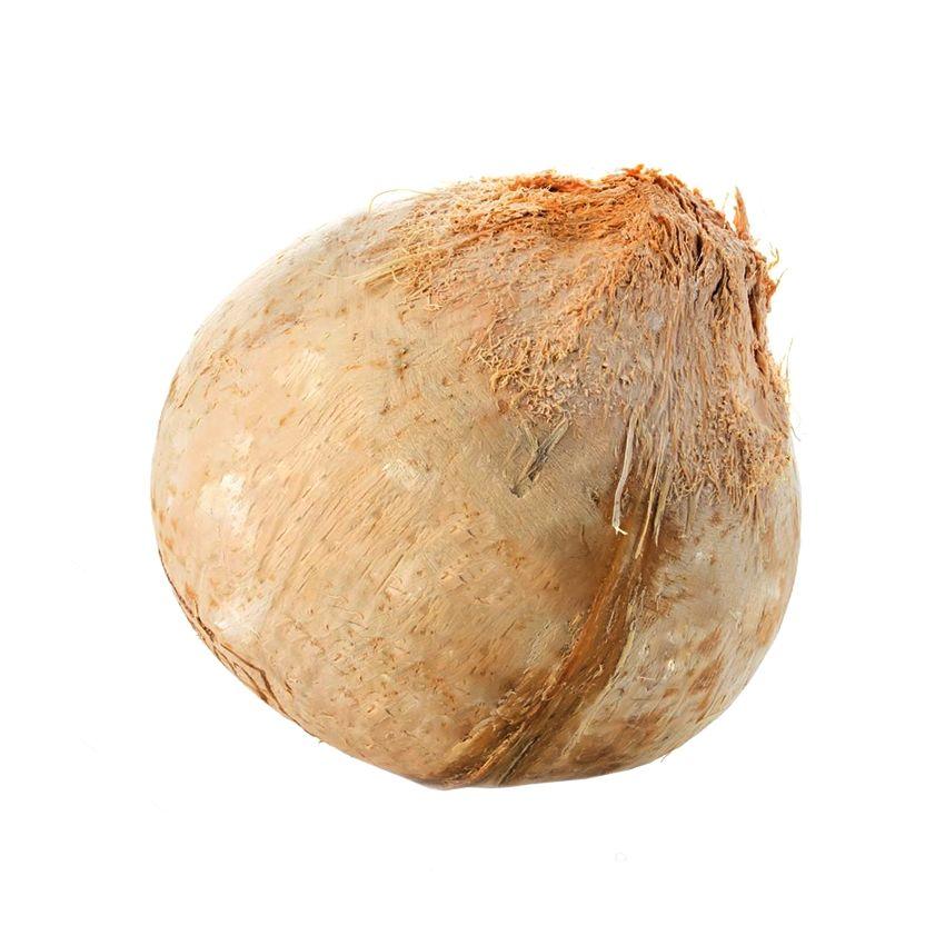 Kokos młody - Zioła cięte, warzywa, grzyby, owoce egzotyczne i przyprawy Freshmint Łódź