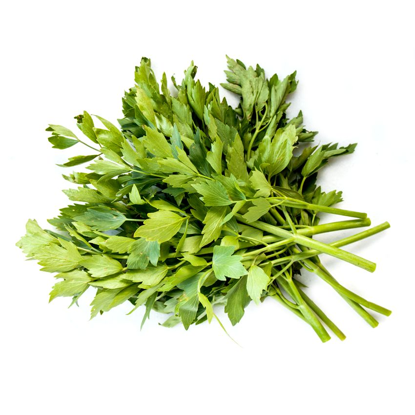 Lubczyk - Zioła cięte, warzywa, grzyby, owoce egzotyczne i przyprawy Freshmint Łódź