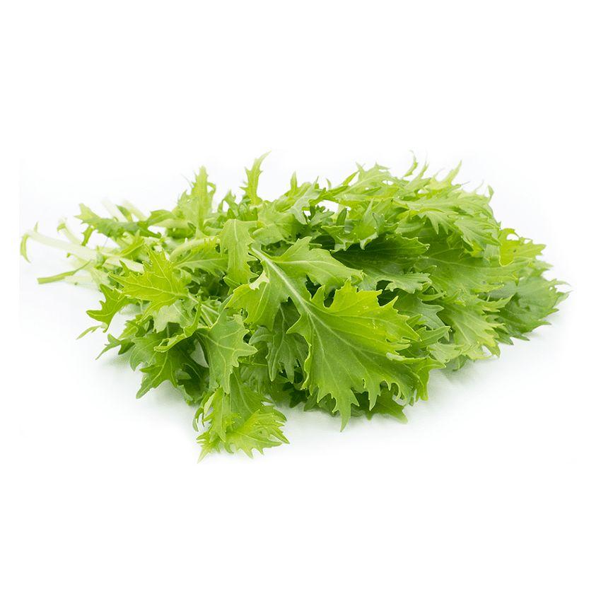 Mizuna zielona - Zioła cięte, warzywa, grzyby, owoce egzotyczne i przyprawy Freshmint Łódź