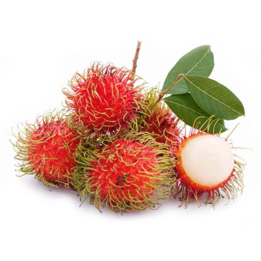 Rambutan - Zioła cięte, warzywa, grzyby, owoce egzotyczne i przyprawy Freshmint Łódź